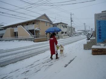 2014年雪1.JPG