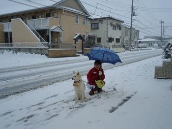 2014年雪2.JPG